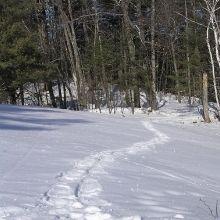 snowshoe.jpg